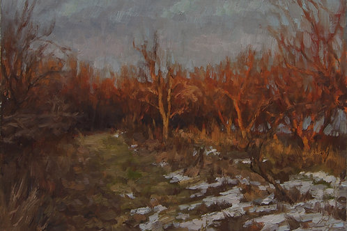 """Evening Glow on Apple Trees"" Hannah C. Heyer Oil Painting"