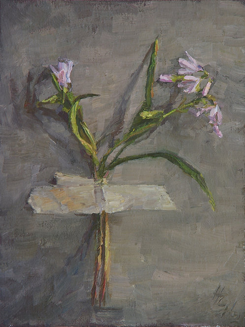 """Virginia Spring Beauty"" Hannah C. Heyer Oil Painting"