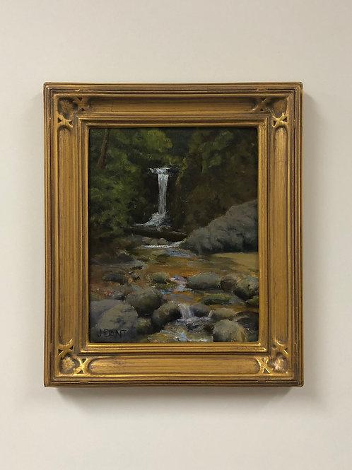 "Jack Dant ""Schwarzwald Falls"""