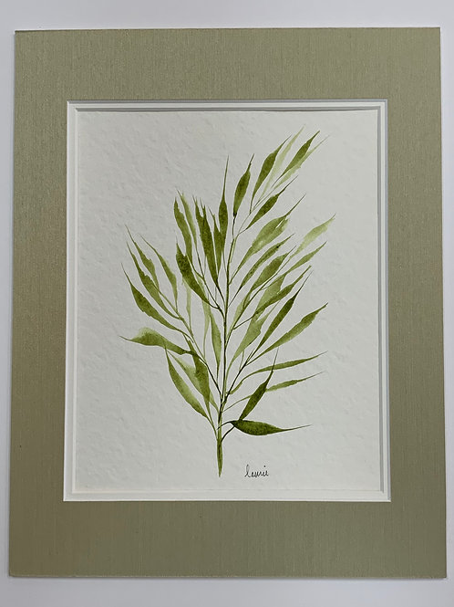 Green Leaves Watercolor by Laurie Plattes