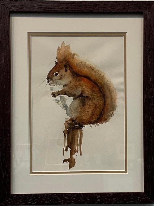 Red Squirrel by Kurt Schulzetenberg