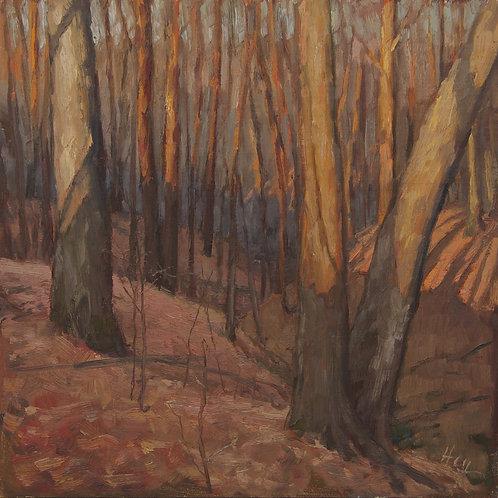 """""""November Light"""" Hannah C. Heyer Oil Painting"""