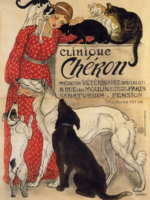 SOLD Clinique Cheron