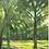 "Thumbnail: SOLD Kim Gordon ""Path Along The Mississippi, Morning Light"" Oil"