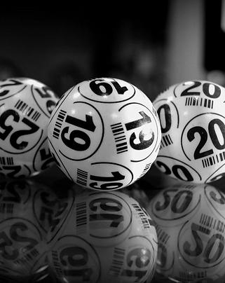 bingo 19.PNG