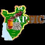 ARFIC-Burundi.png