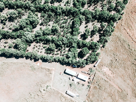 Mechanism of change: Getting more from the Zebu estate