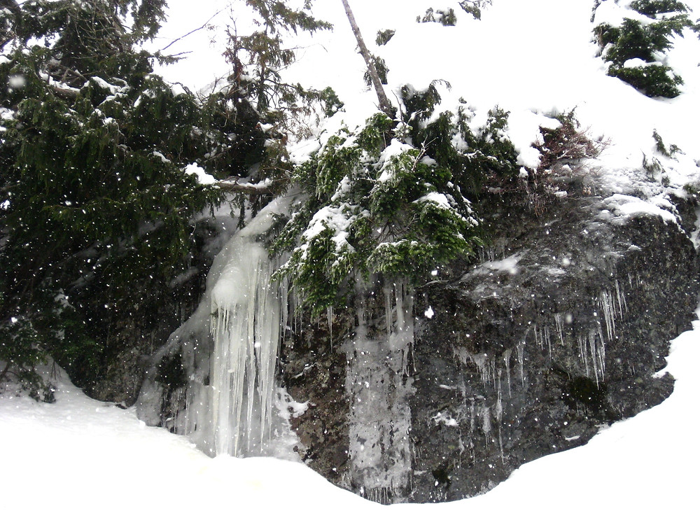 Icicles in North Vancouver, Canada