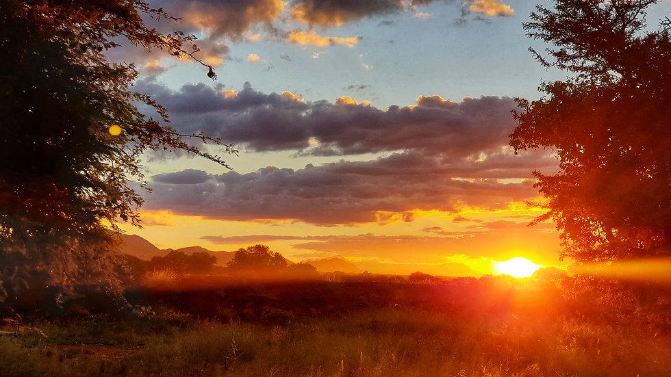 Kilima Sunset