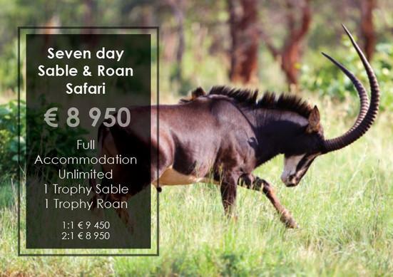 Sable & Roan Safari Special