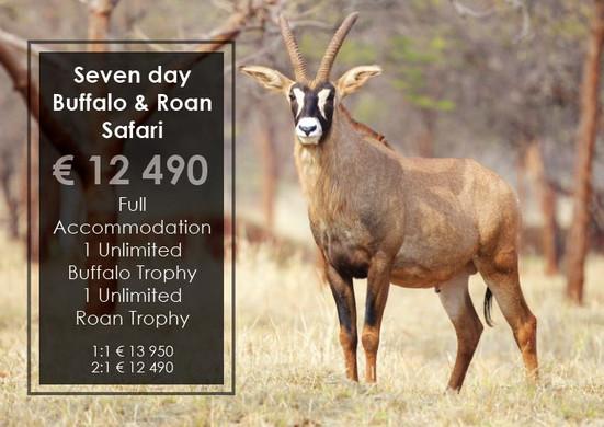 Buffalo & Roan Safari