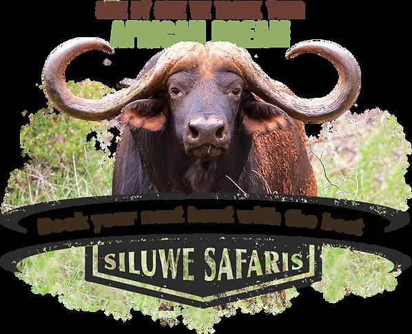 Siluwe Safaris Special.png