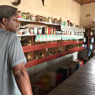 indigenous pharmacy and medicine