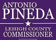 Pineda Logo (Purple).jpg