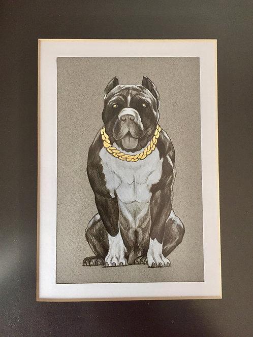 Dibujo - Perro