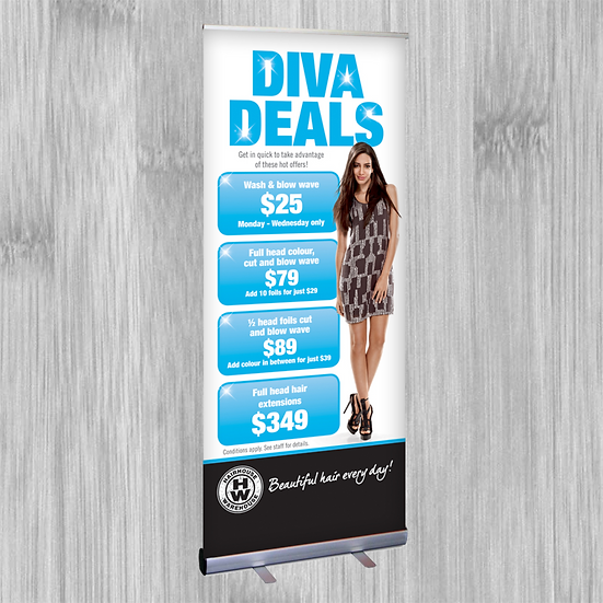 Economy Pull Up Banner