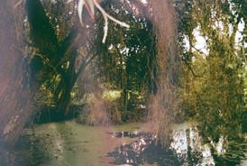 Needham Lakes Suffolk