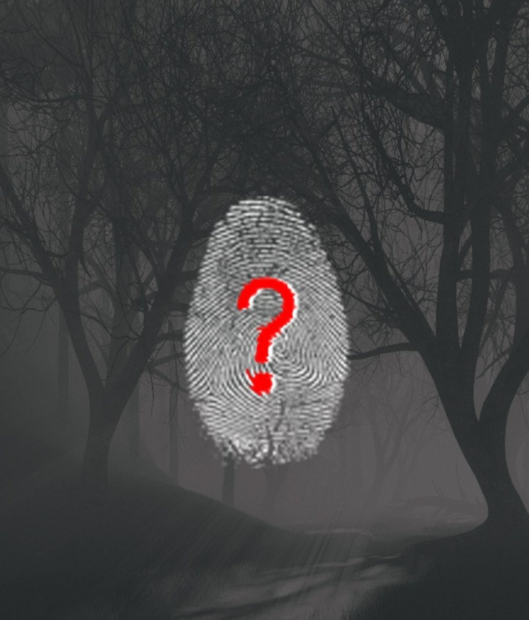 Who killed Agathe ?