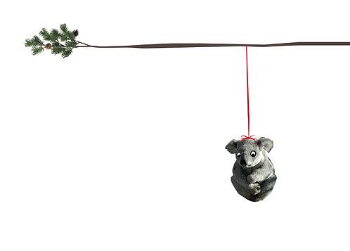 Verkeerde boom- Koala
