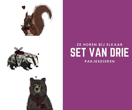 Set van 3 Pakjesdieren
