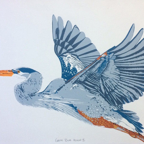 Great Blue Heron II