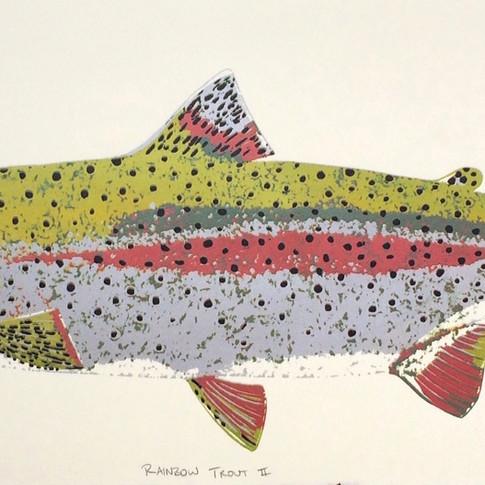 Rainbow Trout II