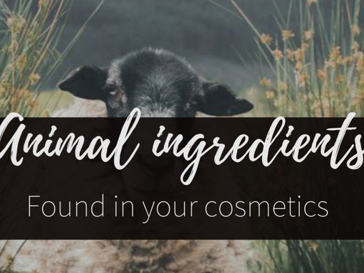 5 Common animal ingredients found in your cosmetics and vegan-friendly alternatives