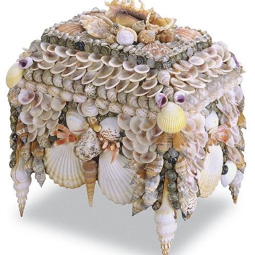#12113 Shell Box