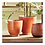 Thumbnail: #11467 SM Orange Glazed Planter