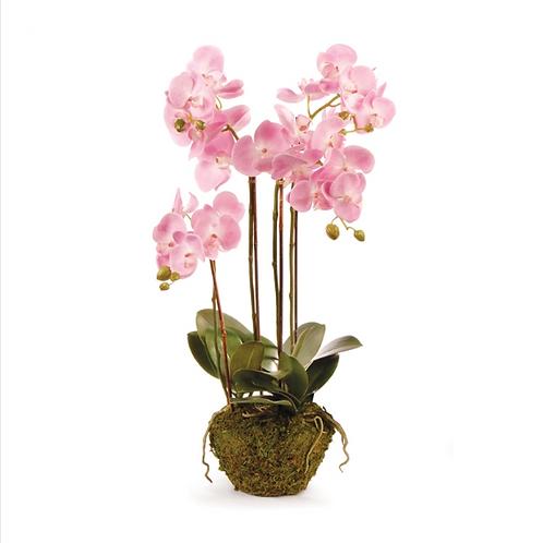 "#3411 Phalaenopsis Orchid Drop-In 30"", Pink"