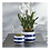 Thumbnail: Blue & White Striped Pots