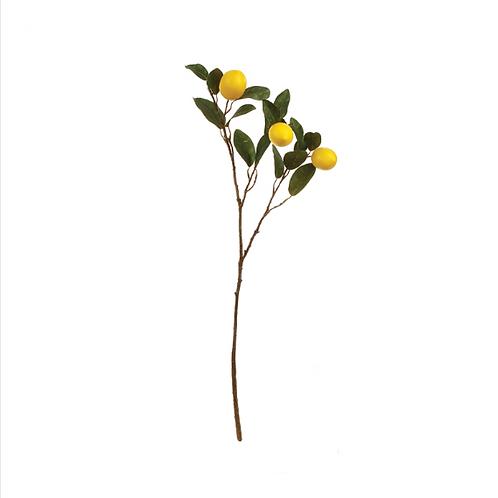 #5438 Set of 3 Lemon Branches