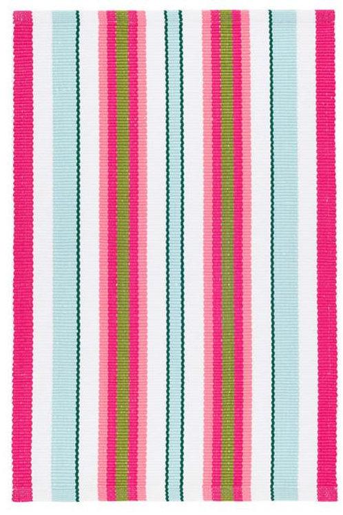 #12065 Watermelon Stripe Rug