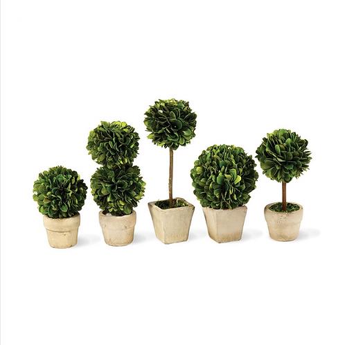 #8019 Mini Topiary