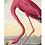 Thumbnail: #5459 Guest Towel Napkin (Audubon Birds)