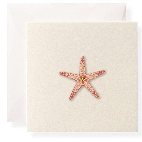 #8358 Sea Star Gift Enclosure