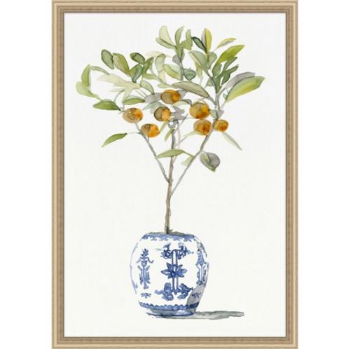 #11032 Orange Tree Chinoiserie