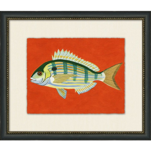 #11041 Pin Fish