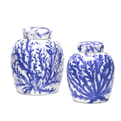 Coral Cove Ginger Jar in Blue