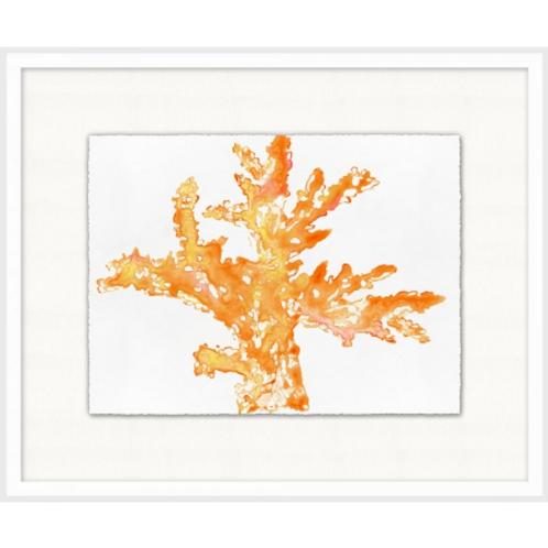 #11011 Orange Coral 2