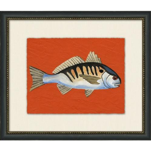 #11040 Spot Fish (Orange background)