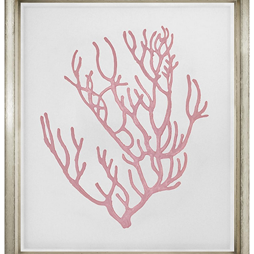 #8217 Pink Coral 4