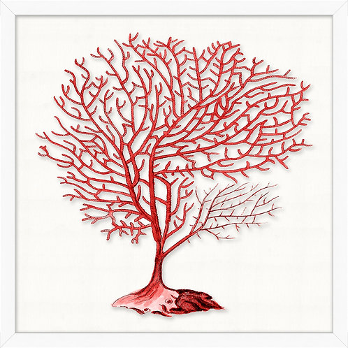 #11480 Red Branch Coral 2