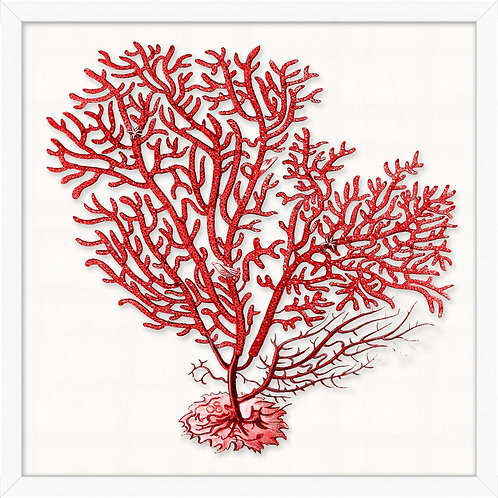 #11478 Red Branch Coral 7