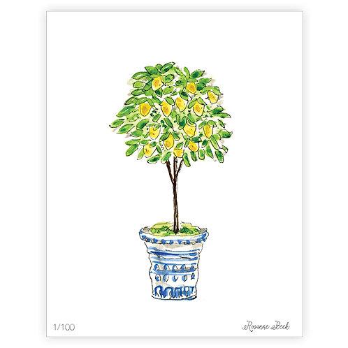 #10181 Lemon Tree Topiary Print