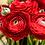 Thumbnail: #9753 Rosie Reds  Painting Kit