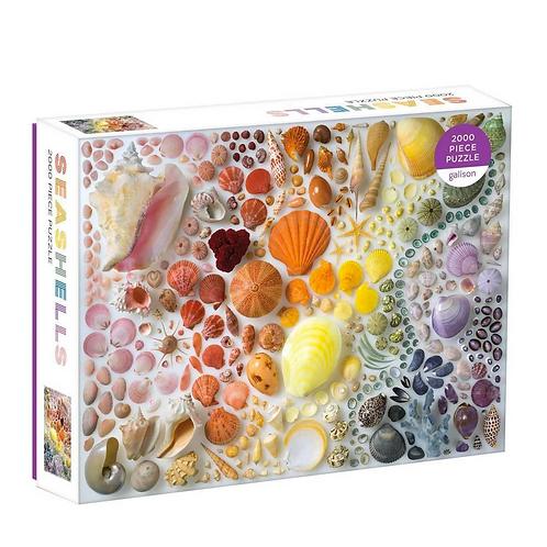 # Rainbow Seashells Puzzle