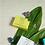 Thumbnail: #12035 Boxed Pedi Buffer (Coconut Verbena)