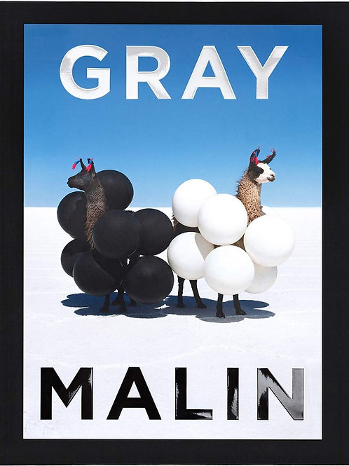#12386 Gray Malin: The Essential Collection