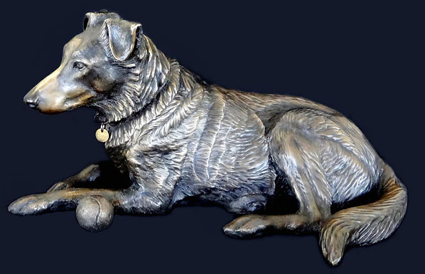 Cathefigurative art bronze sculpture Clancy dog,  sculpture, public art, bronzes, art, australia, australian, artist, bronze sculptures, bronzes, figures, dog, collie